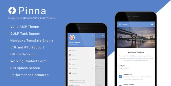 Pinna Google AMP Template