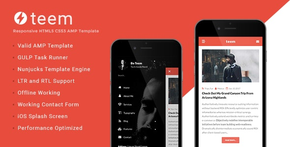 teem Google AMP Blogging Template